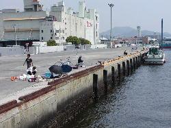 広島西部四季の釣り